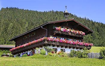 Urlaub auf dem Bio-Bauernhof Langbruckgut - Eben im Pongau